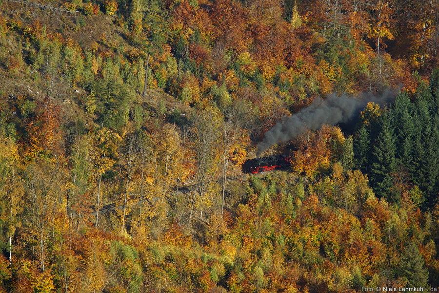 HSB 99 236 mit Zug 8931 zum Brocken. (Drängetal, 2012-10-21)