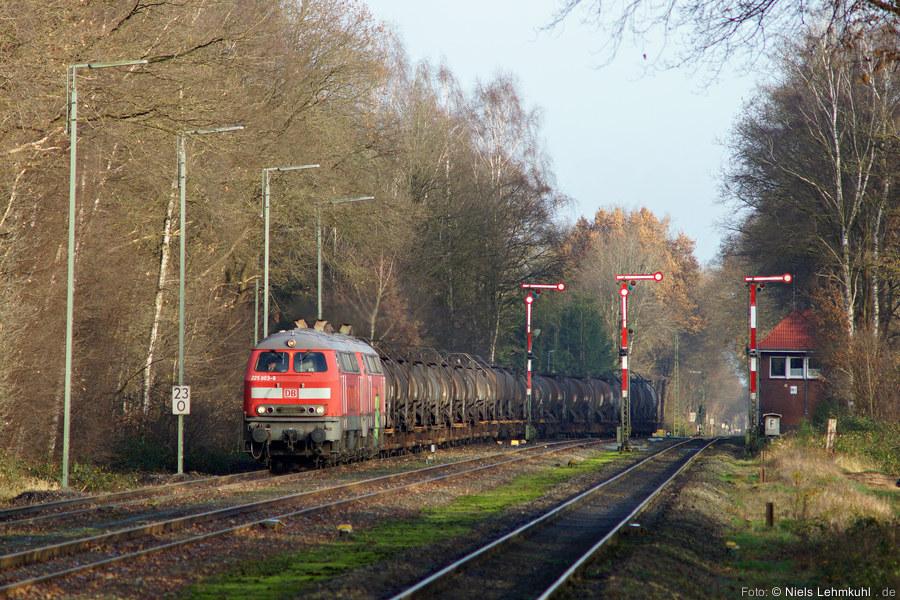 225 803 und 225 809 einfahrend mit dem Schwefelleerpark 53587 (Großenkneten, 2015-12-12)