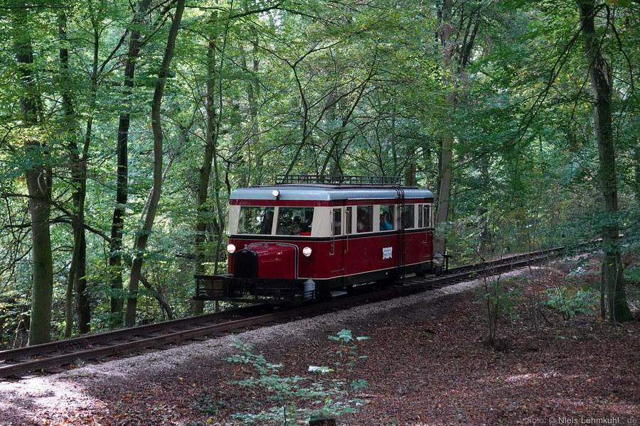 DEV T41 im Vilser Holz. (2019-10-03)